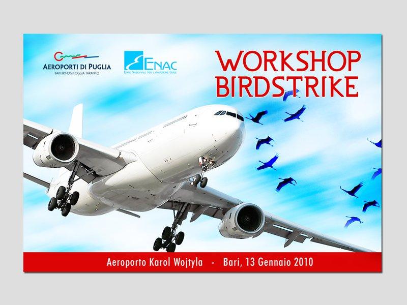 ADP_Birdstrike